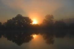 DSC_3695 (griecocathy) Tags: paysage lever soleil brume arbre eau lac ciel rayon reflet noir gris bleu jaune oranger