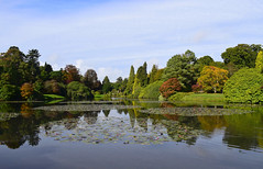 Reflections on the lake (MJ Harbey) Tags: lake reflections nationaltrust sheffieldparkandgardens eastsussex trees uckfield nikon d3300 nikond3300