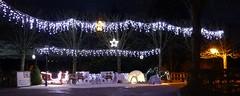 Jardin public en fêtes  . . . (Daniel.35690) Tags: fougères bretagne 2019 france photodenuit panoramique panorama jardinpublic fêtesdefindannée