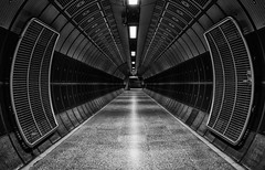 365 - Image 354 - Going underground... (Gary Neville) Tags: 365 365images 6th365 photoaday 2019 sony sonycybershotrx100vi rx100vi vi garyneville