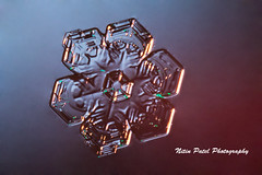 IMG_3133 (nitinpatel2) Tags: snowflake snow winter crystal macro nature nitinpatel