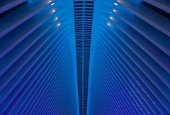 Oculus Blues - World Trade Center, New York City (Andreas Komodromos) Tags: abstract andreaskomodromos architecture art artistic blue city cityscape couple design evening geometric hub linear lines lowermanhattan manhattan modern moody newyork newyorkcity night nightscape ny nyandreas nyc oculus portfolio santiagocalatrava sidewalk silhouette steel subway train transportation urban usa window worldtradecenter wtc
