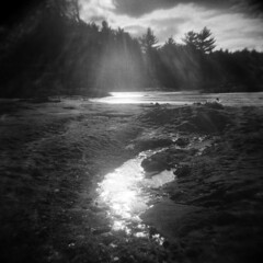 Pearce Lake #8 (LowerDarnley) Tags: holga saugus ma breakheartreservation pearcelake lowerlake winter sun flare reflection lake localwoods frozen ice