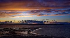 Coucher de soleil sur le lac d'orient à Mesnil Saint Père (Glc PHOTOs) Tags: 20191220164301glc6583nikond85032mmdxo glcphotos nikon d850 fx full frame 45mpixel tamron sp 2470mm f28 di vc usd g2 tamronsp2470mmf28divcusdg2 a032 sunset coucherdesoleil
