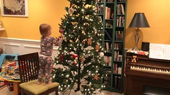 """Dani Puts Ornaments on the Tree • <a style=""""font-size:0.8em;"""" href=""""http://www.flickr.com/photos/109120354@N07/49250018463/"""" target=""""_blank"""">View on Flickr</a>"""