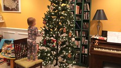 """Dani Puts Ornaments on the Tree • <a style=""""font-size:0.8em;"""" href=""""http://www.flickr.com/photos/109120354@N07/49250018738/"""" target=""""_blank"""">View on Flickr</a>"""