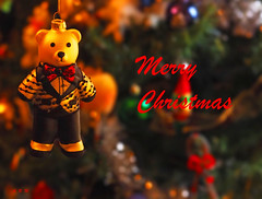 Merry Christmas 2019 - Vancouver, British Columbia (Barra1man (Very Busy)) Tags: merrychristmas2019 merrychristmas christmas happyholidays decorations bear ornament christmastree vancouver britishcolumbia canada olympus olympusem1 iso3200 lens50mm f56150 macro