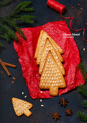 December 19th.. (sch.o.n) Tags: anise background bakery branch cake card celebration christmas closeup cookie cooking culinary december decoration delicious design dessert festive fir flat food gift ginger gingerbread gingerbreadcookies handmade healthy holiday homemade honey new nuts ornament paper pastry pine recipe red rustic shape spicy sweet table tradition traditional tree vegan vegetarian winter year