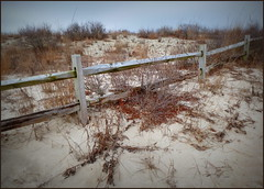 Sand dune with trimmings (edenseekr) Tags: capemaynj sandy sanddunes fence