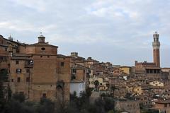 Siena, Tuscany, Italy_213 (tango-) Tags: siena italia italien italie tuscany toskana toscana