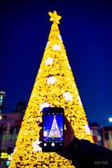 Christmas Tree Selfie (JTeale) Tags: christmastree southkorea christmas tourism canon korea travel teale
