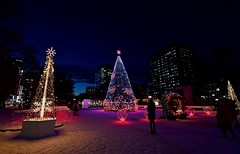 🎅 Happy Holidays!!⛄  (sapporo 749) (kaifudo) Tags: 北海道 札幌 冬 クリスマス イルミネーション sapporo hokkaido japan winter christmas illumination nikon d5 nikkor afs 1424mmf28ged 1424mm