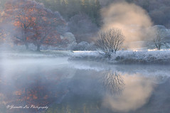 Mood & Atmosphere (jeanette_lea) Tags: landscape united kingdom river brathay elterwater the lake district cumbria sunrise dawn lowlight frost mist autumn colours farm grass trees water reflections