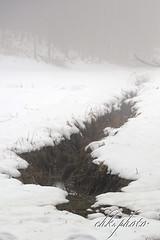 Fogy winter landscape (chk.photo) Tags: landschaft nature naturewatcher outdoor landscape water natur naturemasterclass light ngc flickrtravellaward flickr fluss snow baum austria ice schnee flora österreich salzburg