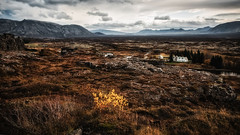 Amazing Iceland - Thingvellir National Park V (Passie13(Ines van Megen-Thijssen)) Tags: ijsland iceland island thegoldencircleclassic thingvellirnationalpark canon inesvanmegen inesvanmegenthijssen