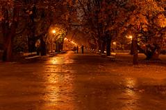 The power of our sighs (4eye) Tags: 4eye warsaw parkujazdowski amateur nikon nikkor autumn november 18105mmf3556gvr