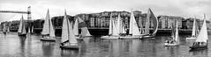 Regata del Gallo (wuploteg1) Tags: regata del gallo bizkaia vizcaya puente bridge euskadi euskalherria pais vasco spain espagne las arenas portugalete areeta getxo guecho país pays basque country