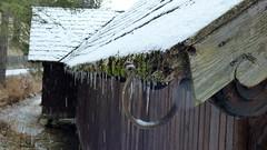 Fischerhütte am Erlaufsee / Fishing hut on Lake Erlaufsee (ursula.valtiner) Tags: fischerhütte fishing hut see dach roof lake schnee snow eiszapfen icicles moos moss erlaufsee lakeerlauf steiermark styria austria autriche österreich