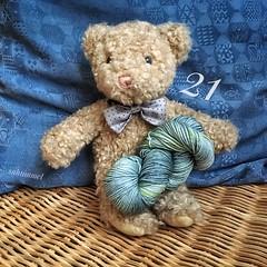 Sir Anthony's Favourite (Sockenhummel) Tags: wolle wool yarn garn sockenwolle funnies dibadu stricken knitting adventkalender christmascalemdar bär teddybär bear teddy