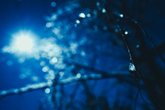 Silver Glitter (trm42) Tags: dof bokeh winter silvermoon sonya7iii icebokeh moon moonscape bokehballs moonlight iso6400 helsinki finland frozenice focus moodygram branches wintermoon ice