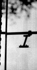 すべてのことをやめ (quit sequence) (Dinasty_Oomae) Tags: argusc3 argus アーガス アーガスc3 白黒写真 白黒 monochrome blackandwhite blackwhite bw outdoor 東京都 東京 tokyo street 千代田区 chiyodaku