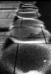 破壊痕 (destruction mark) (Dinasty_Oomae) Tags: argusc3 argus アーガス アーガスc3 白黒写真 白黒 monochrome blackandwhite blackwhite bw outdoor 東京都 東京 tokyo street 千代田区 chiyodaku