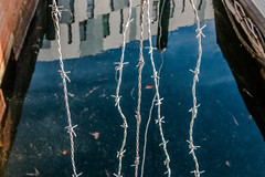 Detail 2 (Patricia Wilden (Away until February)) Tags: canoneos70d 1785mm ipswich winter street ©patriciawilden2019 barbedwire water waterfront marina metal shapes dof detail reflection