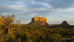 Evening in Sedona_T3W6024 (Alfred J. Lockwood Photography) Tags: evening bellrock courthouserock rockformations junipertree arizona sedona summer landscape alfredjlockwood nature goldenhour