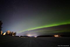 Northern light! (petergranström) Tags: approved northern light norrsken sky himmel lake sjö stars stjärnor trees träd