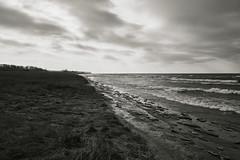 025259abw  Forecast...Overcast (David G. Hoffman) Tags: lake lakeshore lakemichigan waves clouds beach beachgrass blackandwhite vanishingpoint