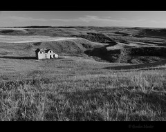 on the map - still (Gordon Hunter) Tags: house home shack cabin abode shed building old derelict abandoned decay vintage hills country rolling land prairies landscape bw mono grass fields evening light shadows road highway laing ab canada gordon hunter nikon 5000 summer