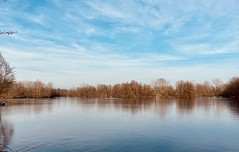 "Schrock Lake, Sharon Woods Park, Westerville, Ohio. (paulgarf53) Tags: natureparksohio""sharonwoods""westervillefrozenskycloudsiphone"