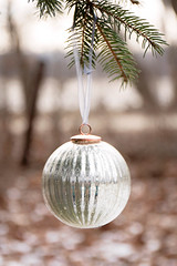 Silver Bauble (Cristy McAuley) Tags: bauble ornament christmasornament silver shiny glimmer christmas bright smileonsaturday