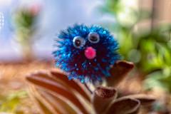 Bokeh Bauble (Dotsy McCurly) Tags: smileonsaturday baubles sparkly bokeh alien googleeyes plants succulents fuzzy panda plant macro canoneos80d efs35mmf28macroisstm