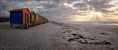 Muizenberg Beach Huts Sunrise Panorama (Panorama Paul) Tags: paulbruinsphotography wwwpaulbruinscoza southafrica westerncape muizenbergbeach beachhuts sunrise nikond800 nikkorlenses nikfilters panorama