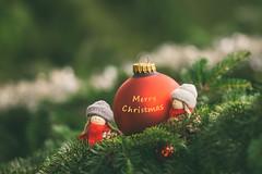 Handle carefully (Inka56) Tags: christmasdecoration pine pinecones greetingcard christmas bauble dolls toy smalltoys flickrfriday glass