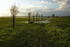 *** (pszcz9) Tags: polska poland przyroda nature natura naturaleza wiosna spring łąka meadow woda water pejzaż landscape beautifulearth sony a77