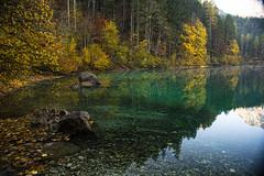 Zona d'ombra (giannipiras555) Tags: lago tovel trentino mattino alba riflessi autunno ombra rocce alberi acqua natura paesaggio nikon montagne panorama