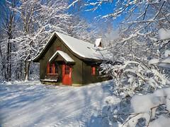 Cabin In The Woods (Meryl Raddatz) Tags: cabin snow woods ski xc quebec canada huron crosscountryskiing