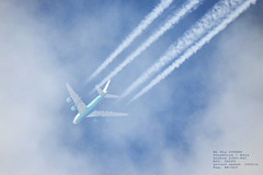 taken from my backyard 088 (planes, space, nature) Tags: hi fly dy8993 stockholm beja airbus a380841 36 492 9hmip