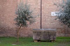 IMGP5807 (hlavaty85) Tags: boloňa bologna basilica santo stefano kostel church bazilika svatý štěpán