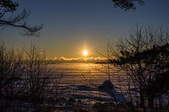 Finnish Sunrise (CraDorPhoto) Tags: canon6d landscape nature outdoors outside sun sunrise espoo finland