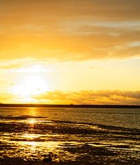 Coucher de soleil à Mesnil Saint Père (Glc PHOTOs) Tags: 20191220162704glc6461nikond85070mmdxo glcphotos nikon d850 fx full frame 45mpixel tamron sp 2470mm f28 di vc usd g2 tamronsp2470mmf28divcusdg2 a032 sunset coucherdesoleil sun lake lac soleil