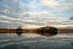 (TAKING A BREAK - walk in the country) Tags: birds lake lyngbysø winter vinter sunshine sunset reflections reflekser clouds skyer fugle december