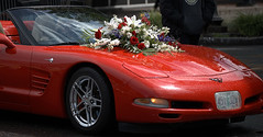 Wet Convertible (Scott 97006) Tags: sportscar car vehicle convertible wet flowers bouquet beauty parade ferrari sleek