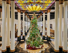 Driskill Hotel lobby  December 2019 (7 of 1) (Rick Byrnes) Tags: driskill driskillhotel 1886driskillhotel austintexas austin sixth street minote10 xaiomiminote10 christmas hotellobby christmastree
