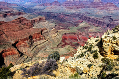 Moran Point View (chasingthelight10) Tags: arizona places grandcanyon events photography travel landscapes canyons