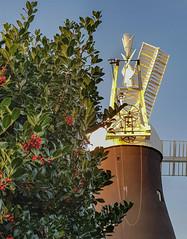 Holgate Windmill, December 2019 - 02