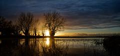 Coucher de soleil sur le lac d'orient (Glc PHOTOs) Tags: 20191220161542glc6386nikond85024mmdxo tamron sp 2470mm f28 di vc usd g2 tamronsp2470mmf28divcusdg2 a032 nikon d850 fx full frame 45mpixel sunset coucherdesoleil glcphotos