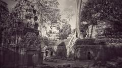Antiquity (Luc1659) Tags: angkor cambogia antichità foresta rovine seppia